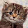 Аватар для jon62